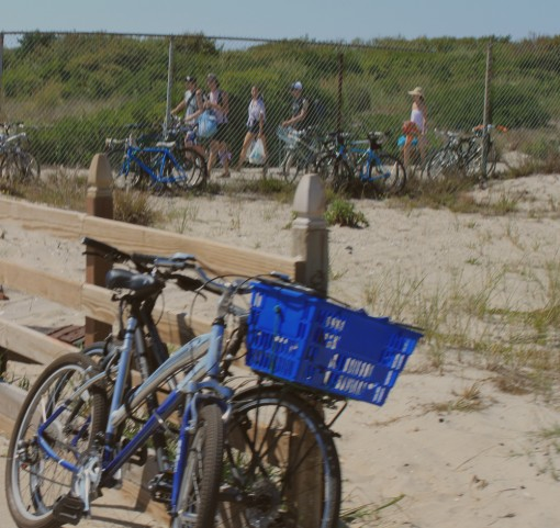 fort tilden, bike to the beach, sustainable weekend, design squish blog