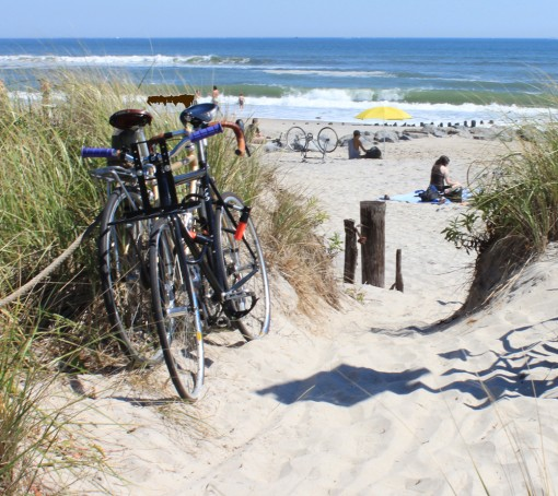 the most biked to beach, design squish blog