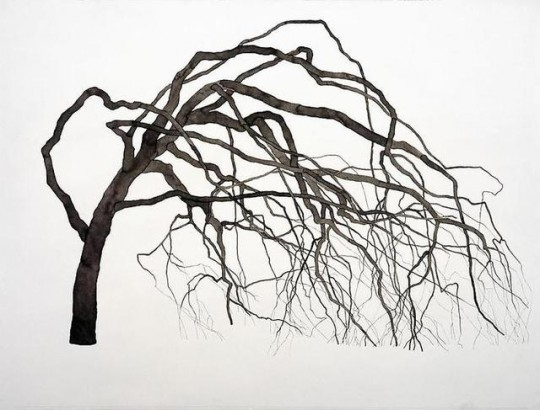 trees drawing, roxy paine, design squish blog