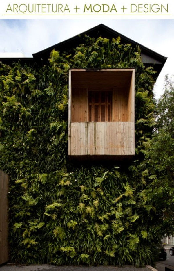 vines, overgrowth, designer house, design squish blog