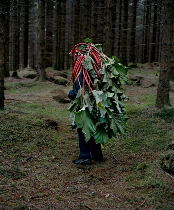 riitta ikonen, contemporary photography, art, design squish blog