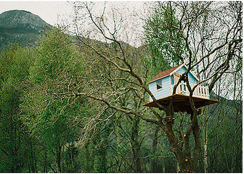 best tree house,design squish blog