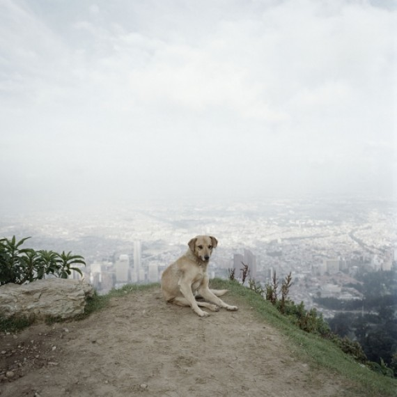 Desire to run away, alec soth, design squish blog
