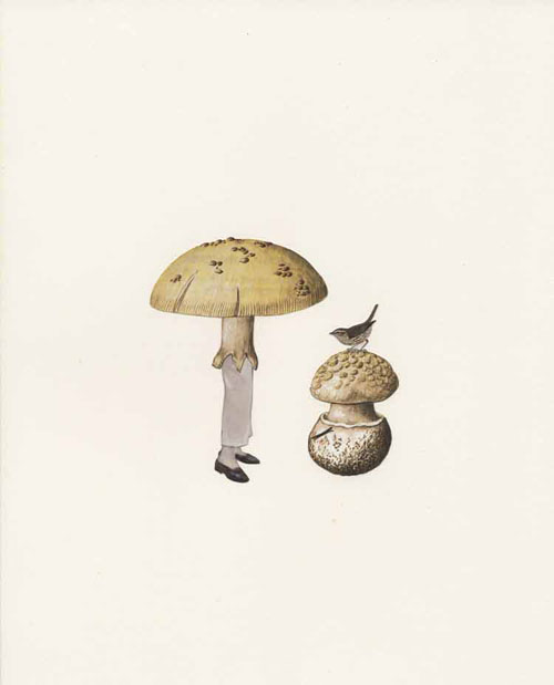 scientific illustration contemporary art, Amy Ross