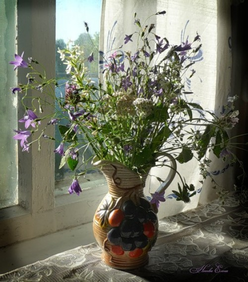 field flowers, bouquet on the windowsill, design squish blog