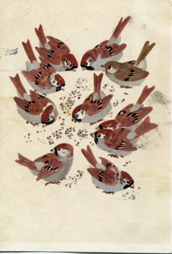 feeding chikadees, russian postcards, soviet children book illustrations, design squish blog
