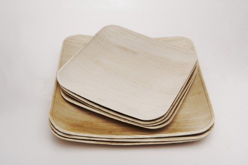 eco friendly, disposable plates made from fallen palm leaves
