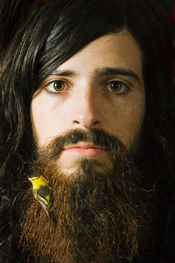 devendra banhart with bird in his beard, design squish blog