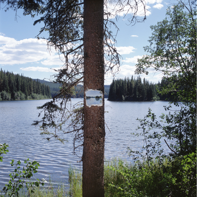 face lake, photograph, painting