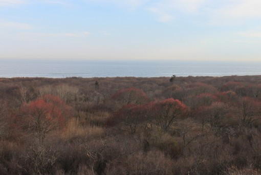bike ride to fort tilden, Fort Tilden, Far Rockaway, Brooklyn, NY