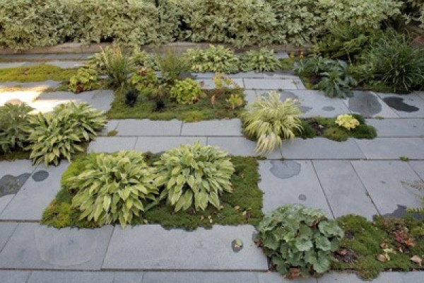 overgrown garden design, design squish blog