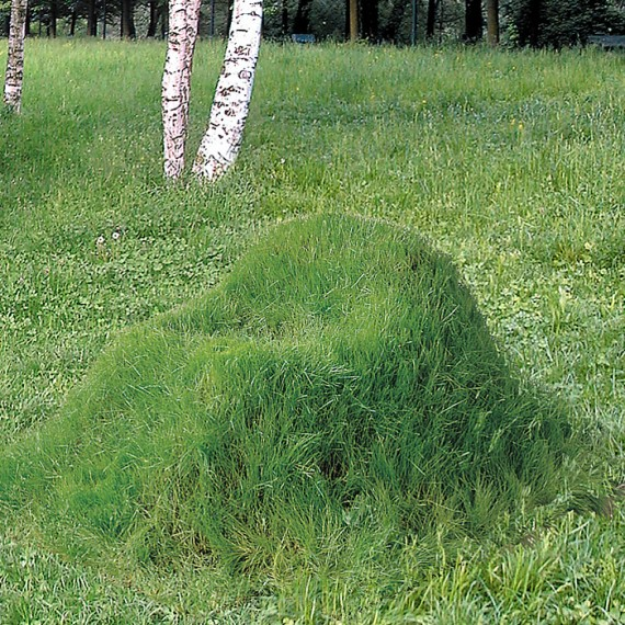 grass chair, design squish blog