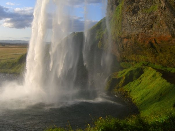 iceland waterfall and moss paradise