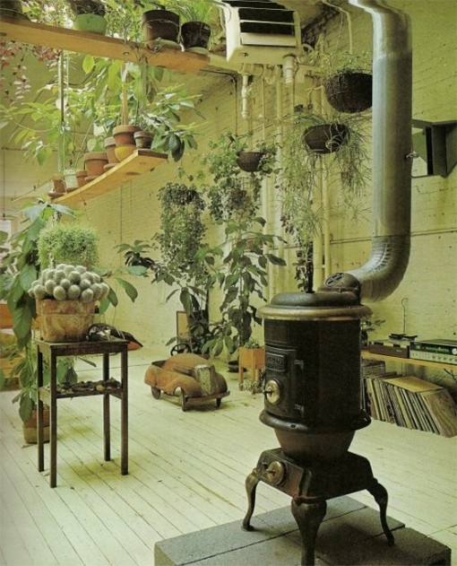 indoor garden, old chum, design squish blog