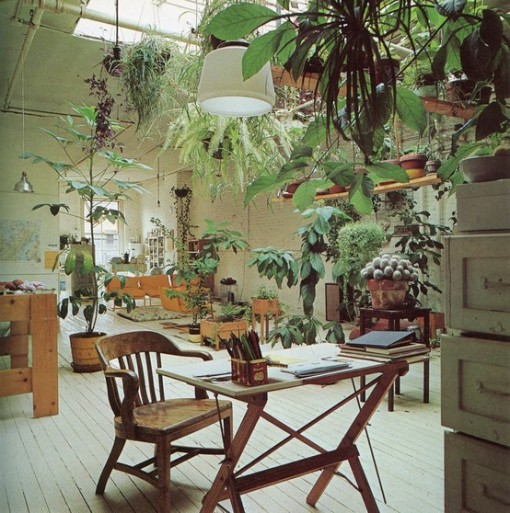 indoor garden, roof window, old chum, design squish blog