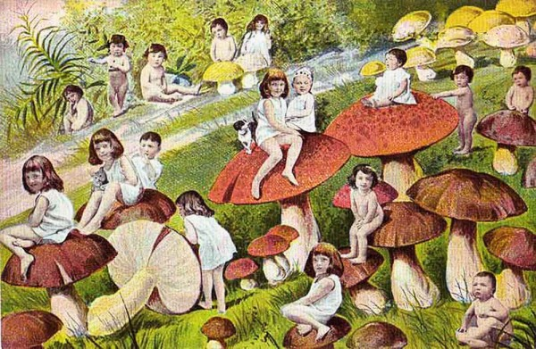 mushrooms and babies, multi-baby postcard, design squish blog