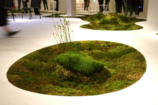 Biodegradable moss carpet