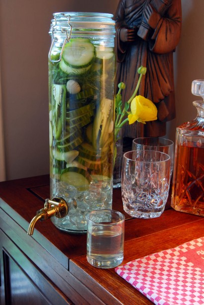 design squish blog, spicy dill pickle vodka