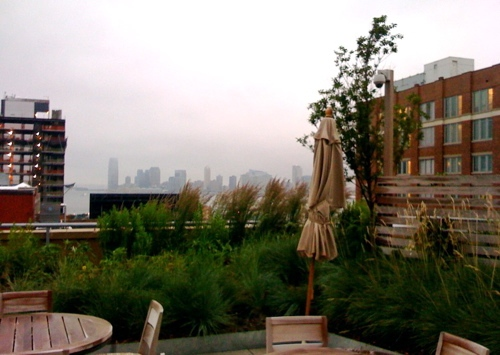 rooftop garden, New york city