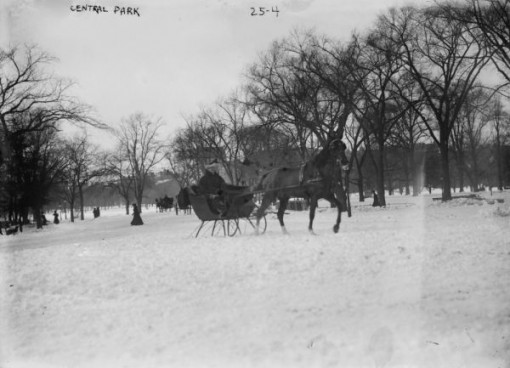 snow, sleigh riding in new york city