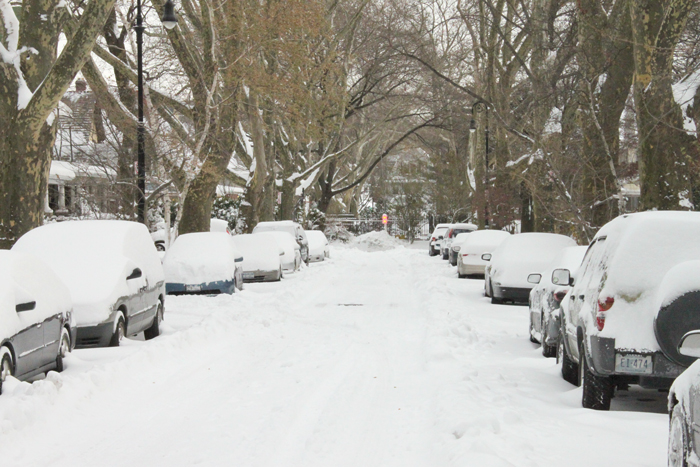 snow on rugby road, ditmas park, brooklyn