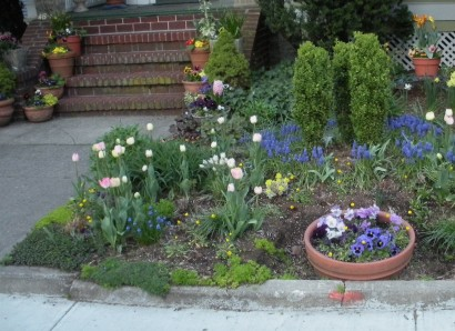 spring flowers in brooklyn, design squish blog