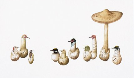 mushroom surreal artwork illustration by Amy Ross