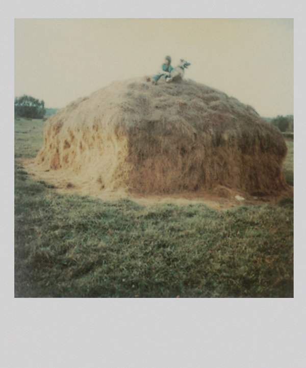 TARKOVSKY POLAROIDS, design squish blog