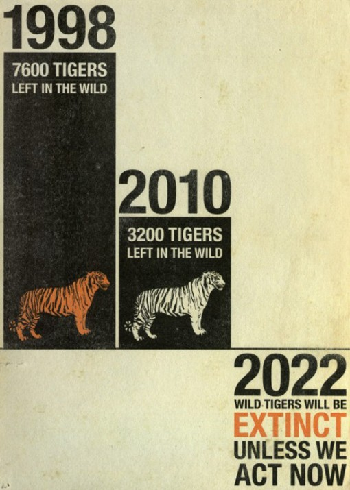 2022 wild tigers will be extinct, extinct tigers poster, design squish blog