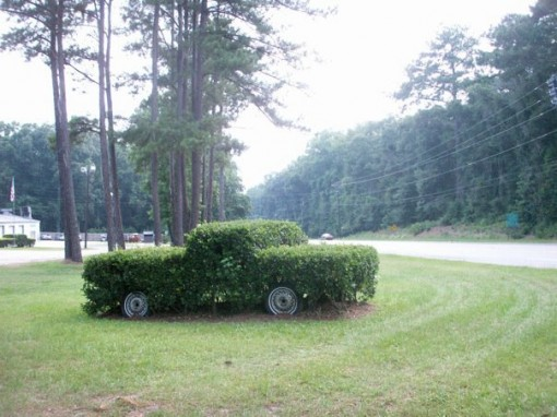 topiary car, contradiction, america, u.s, design squish blog