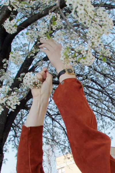 spring, flowering trees, design squish blog